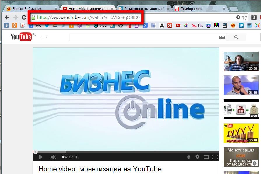 Как можно скачать видео с YouTube по ссылке